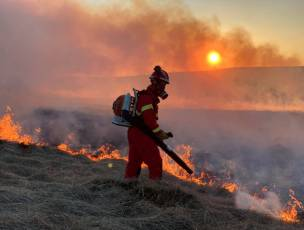 Main image for Crews tackle four-day moorland inferno