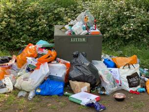 Main image for Littering makes up majority of fines