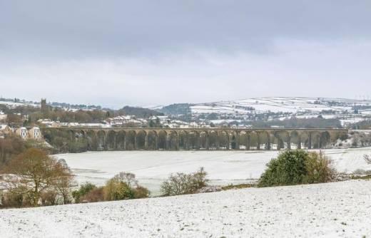 Main image for Snow Updates - Jan 14