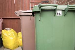 Main image for Staff shortages halt green bin collection