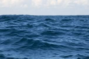 Main image for Water warnings for Barnsley rivers